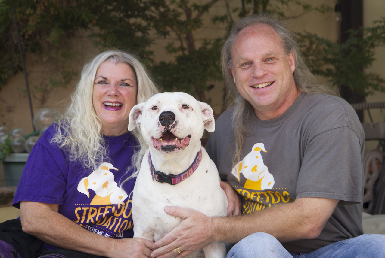 A visit to a shelter changed the life of Melanie and Kent Pafford – and has saved the lives of hundreds of homeless dogs, too.
