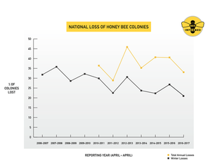 Image credit: University of Maryland/Bee Informed Partnership (Click image to download hi-res version.)