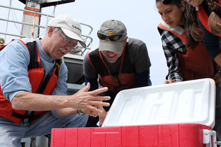 Bill Peterson and colleagues inspect tiny marine organisms collected during a run of the Newport Hydrographic Line survey.