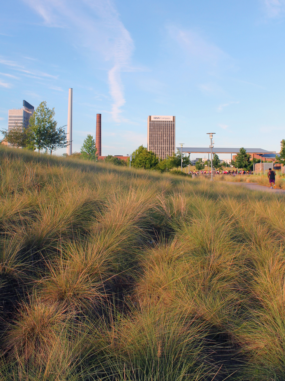 A gorgeous day at Railroad Park