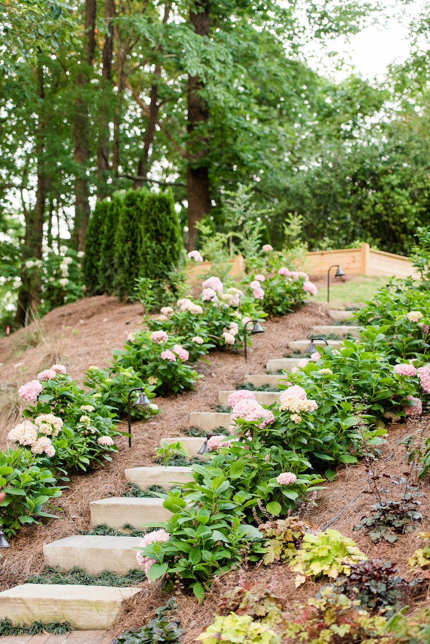 The stairway is made of 30-inch grey flagstone step treads planted with Dwarf Mondo Grass and hedges of Penny Mac hydrangeas.