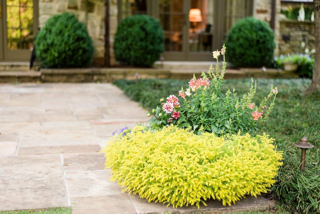 A beautiful planter spills forth with the handiwork of Pratt Brown Landscape.