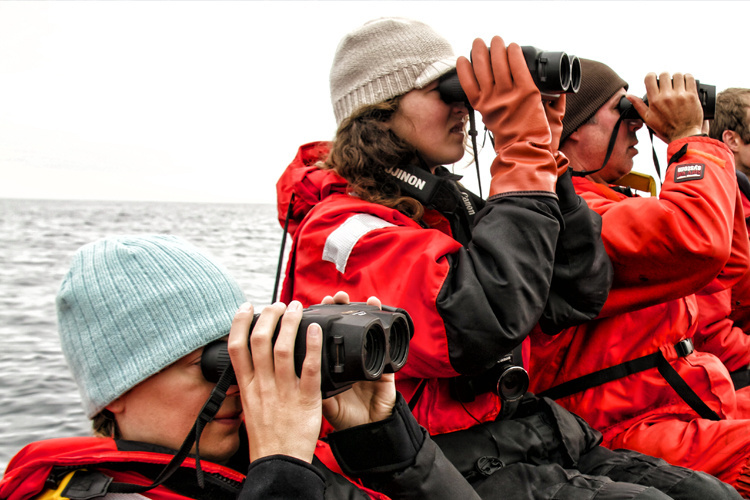 Fisheries Monitoring and Analysis Observers Program