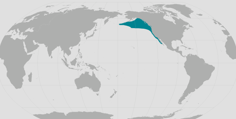 Northern elephant seal range map