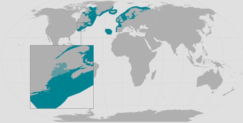 Atlantic salmon range