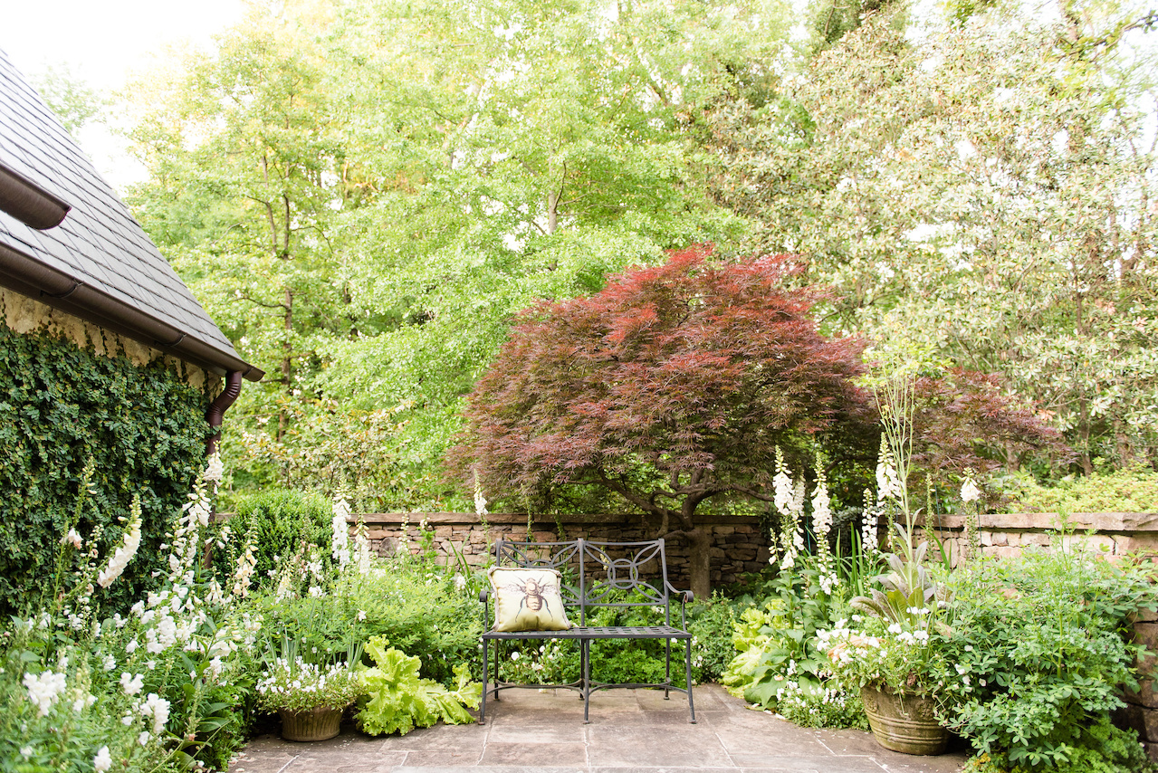 """The white blooms of the """"white garden"""" are accented by a Japanese maple, creeping fig along the left wall and a stone wall, enclosing the space for privacy."""