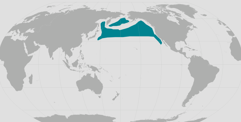 Northern fur seal range map.