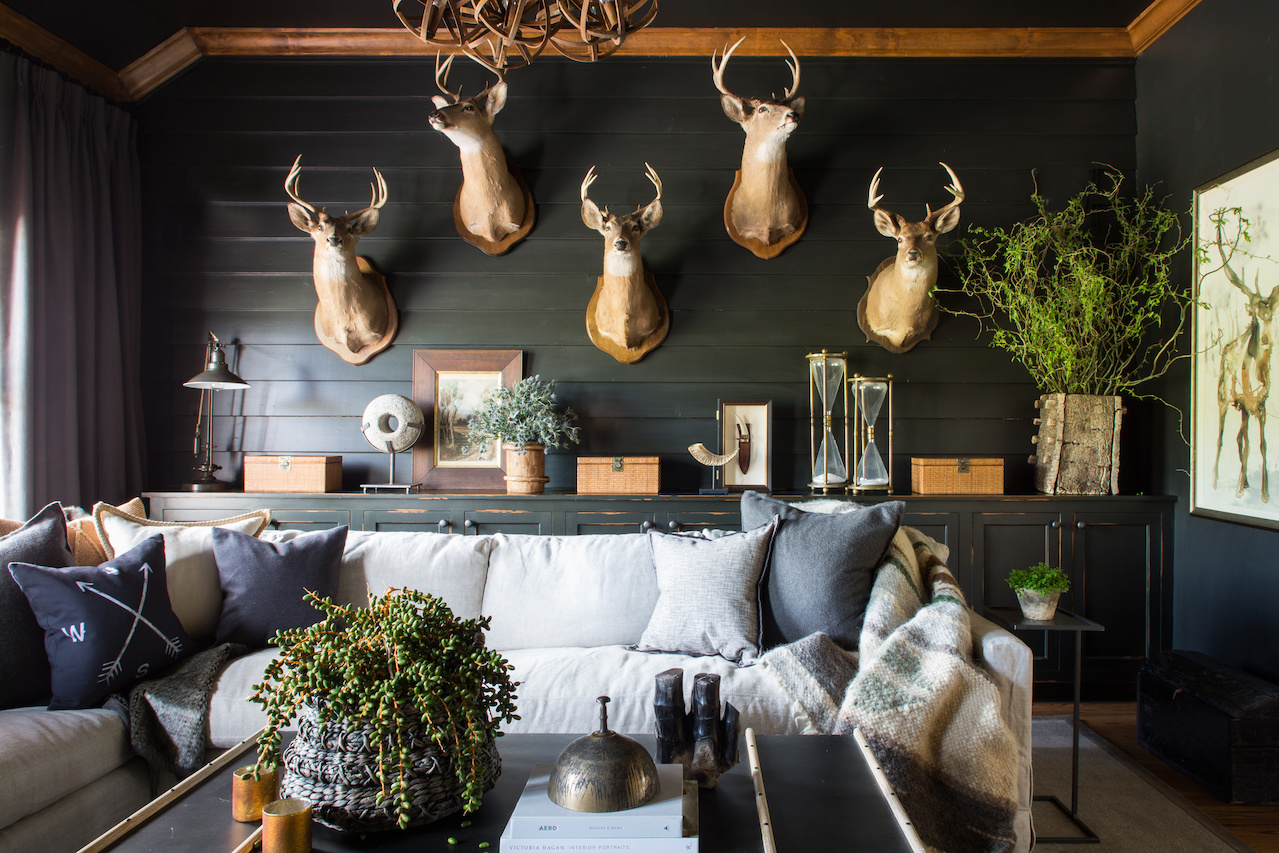 An impressive collection of deer is showcased on the dark walls of this masculine space.