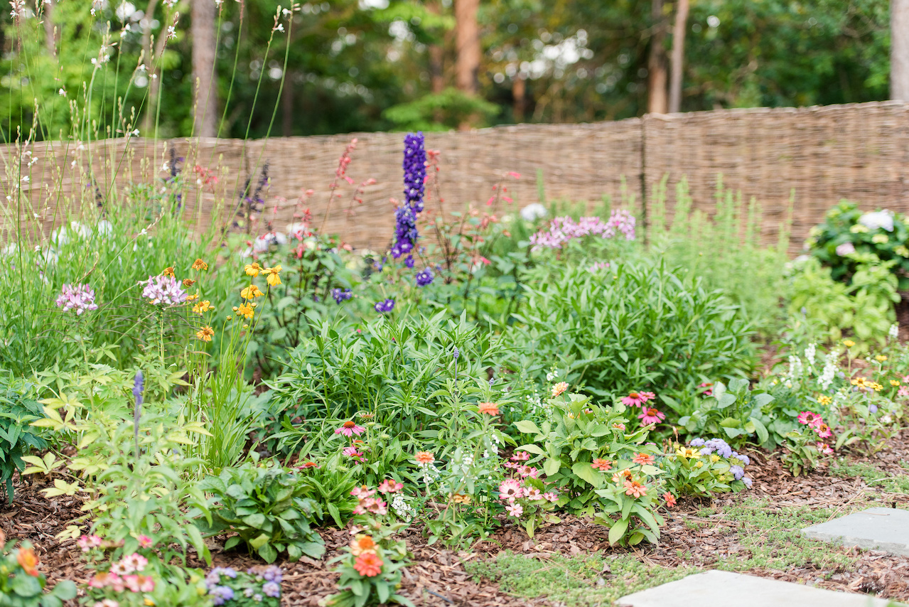 Purple delphiniums grow upward amid a lush garden of greenery and blossoms.