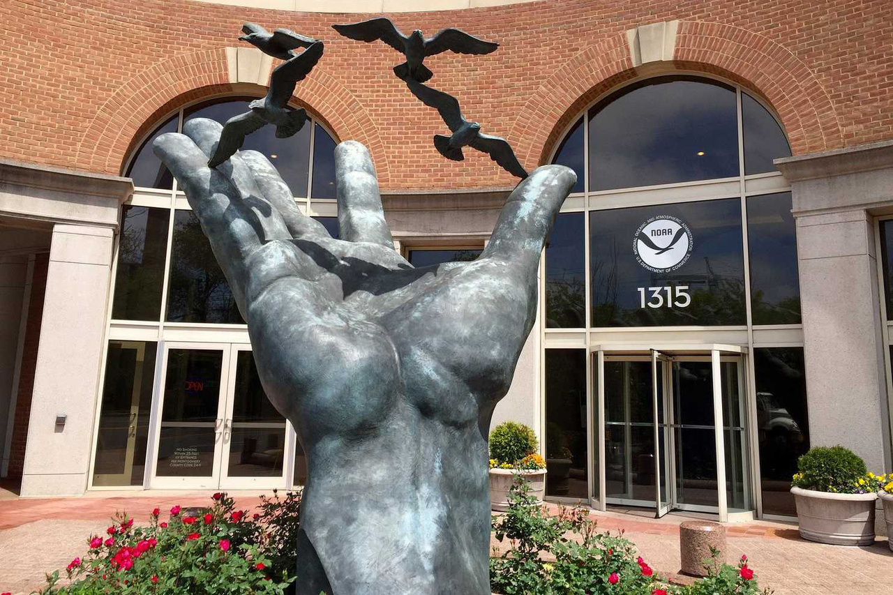 Hand statue with seagulls.