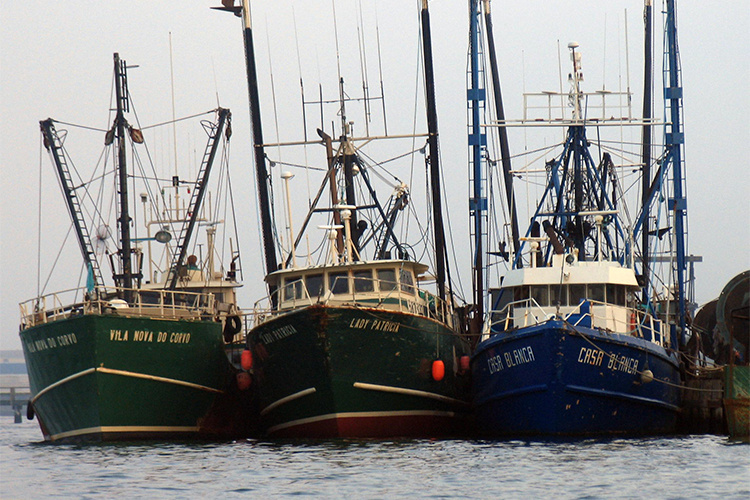 Fishing boats in New England