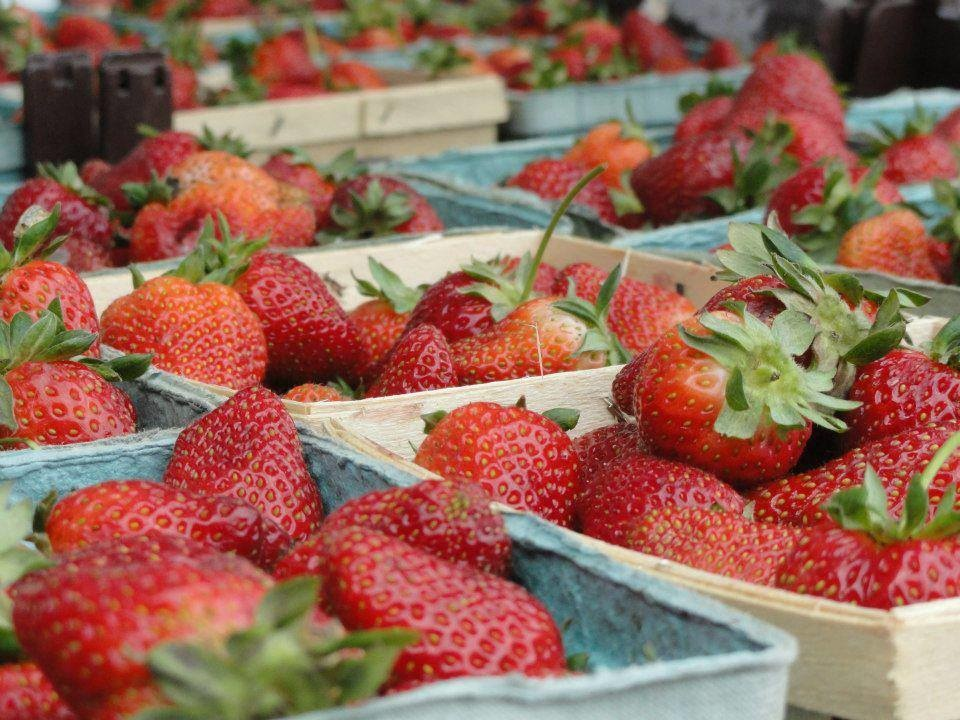 Donelson's farmers market is a must visit this summer