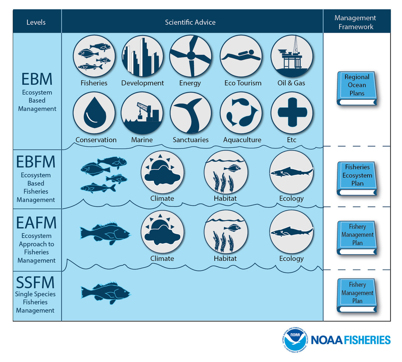 Infographic depicting the components to ecosystem-based fisheries management