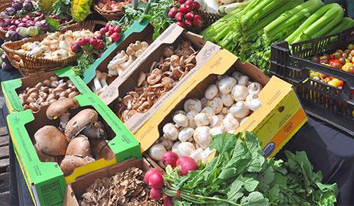 harvest for health farmer's market