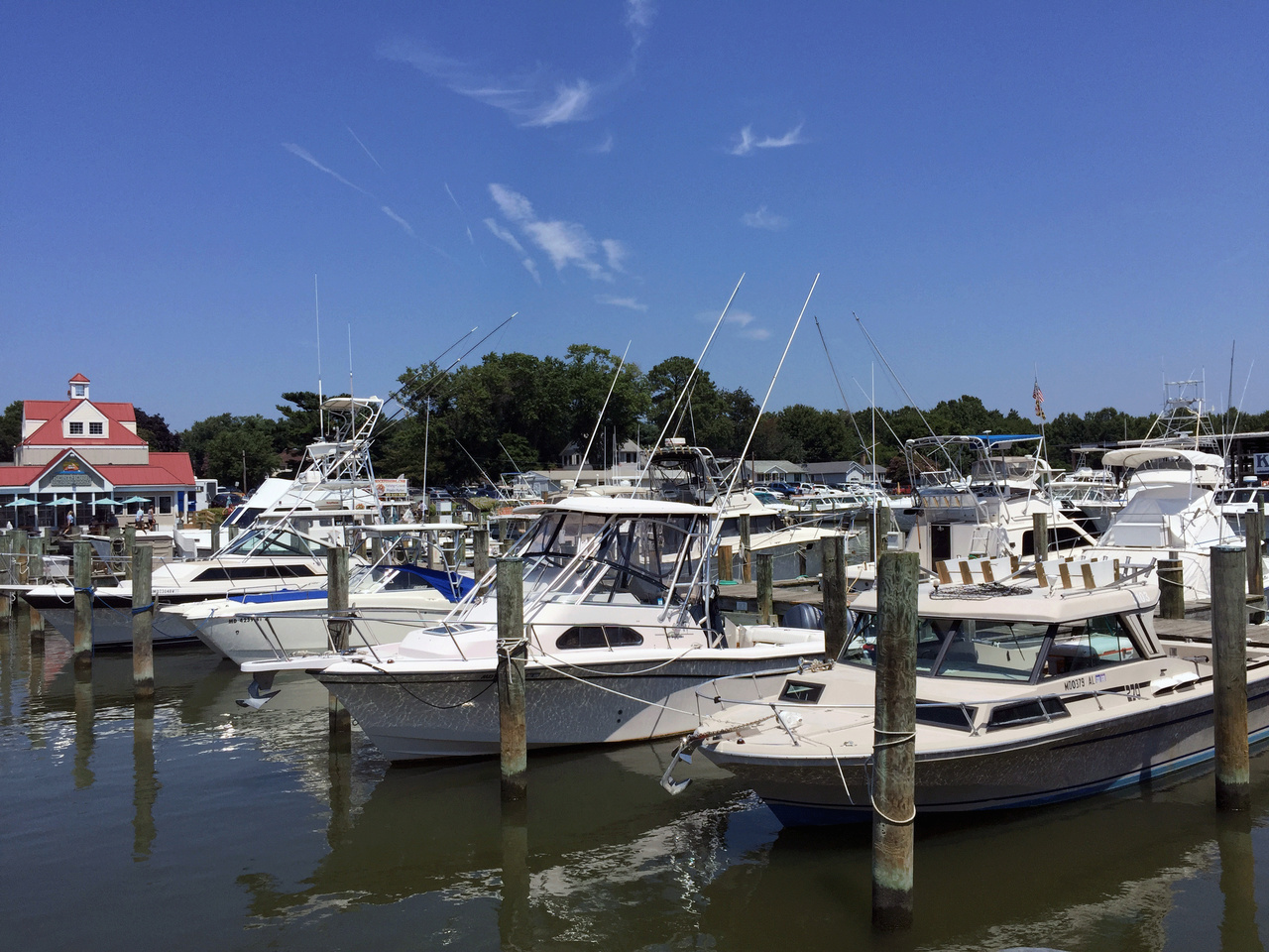 Marina in Mid-Atlantic