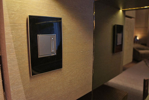 adorne Mirror Black Wall Plate with Magnesium Dimmer