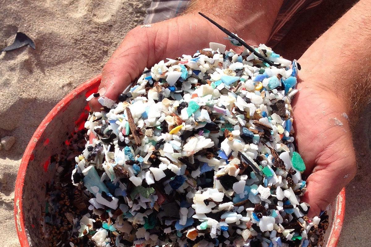 Bucket of microplastics held between hands