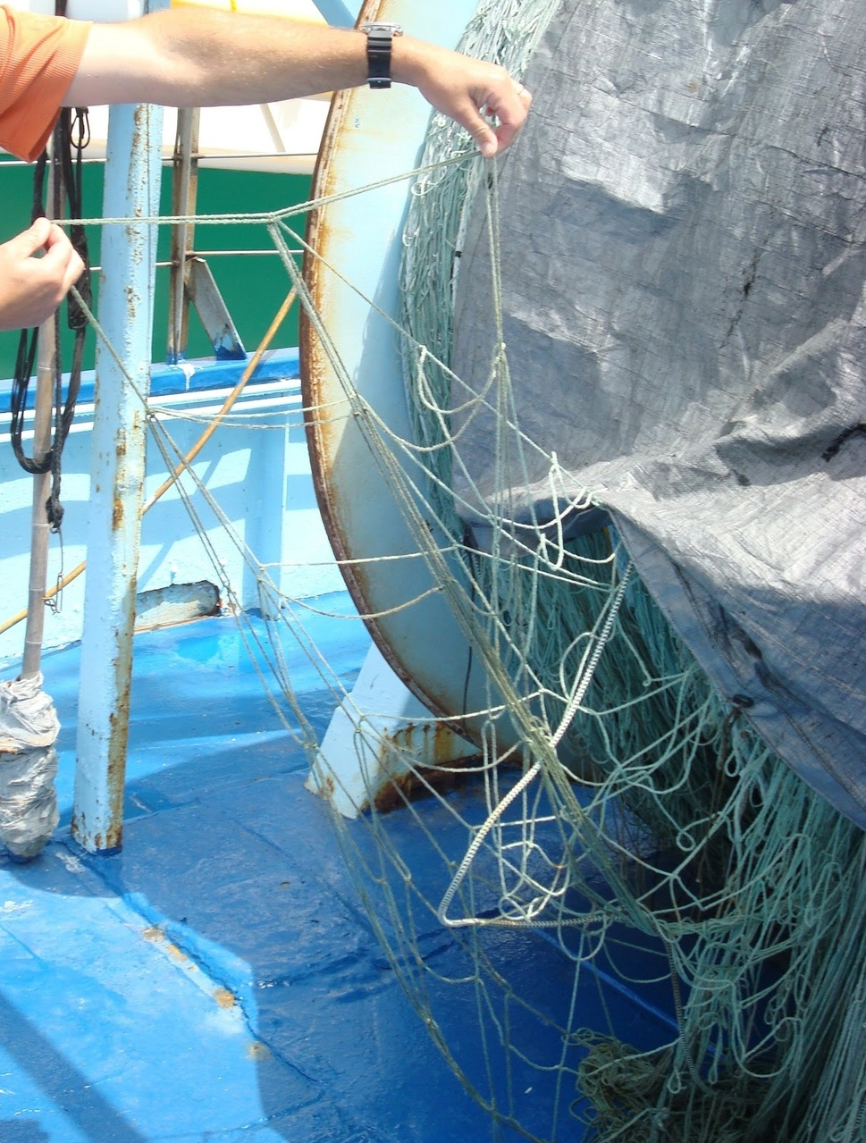 Large Mesh Drift Gillnet