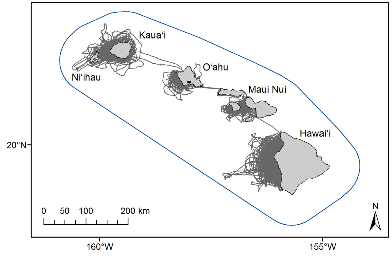 Map of the main Hawaiian Islands, showing the extent of small-boat survey effort by Cascadia Research Collective (gray lines, largely on leeward sides of the islands) relative to the larger range of the main Hawaiian Island false killer whale population (blue line)