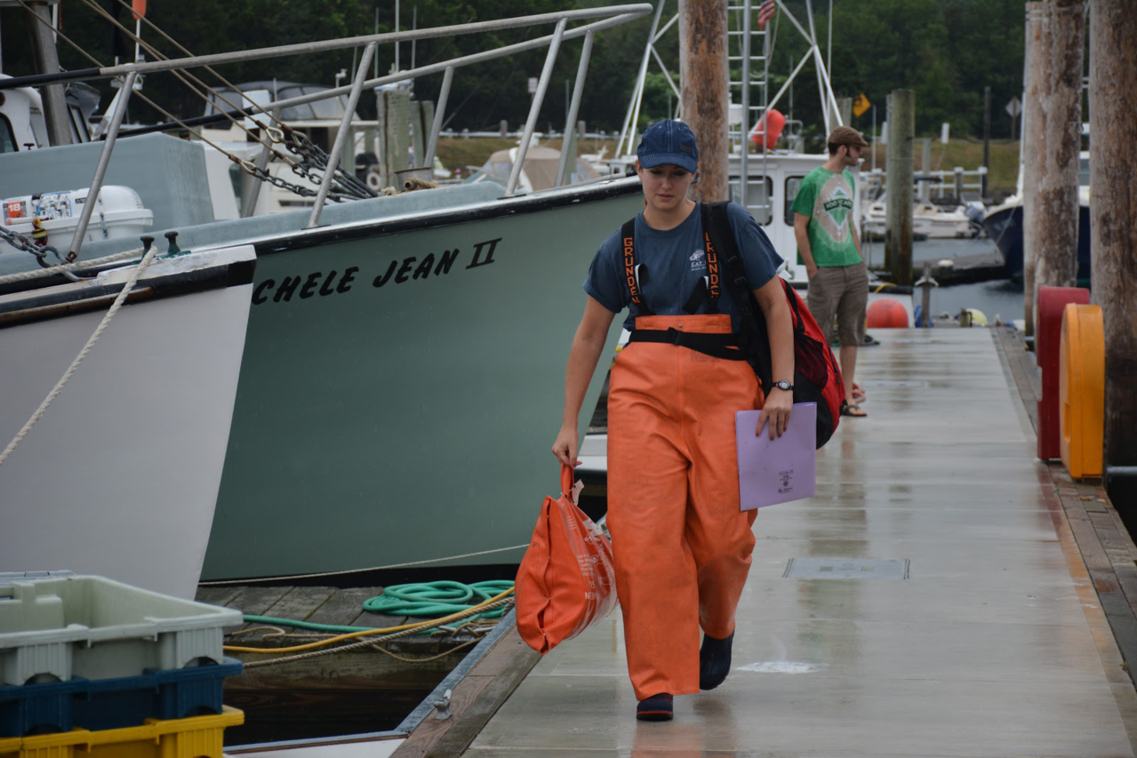 Fishery observer with observer gear on commercial fishing dock heading towards a fishing vessel.