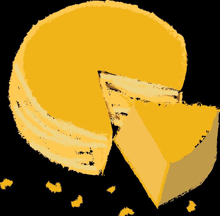 Cheese wheel illustration