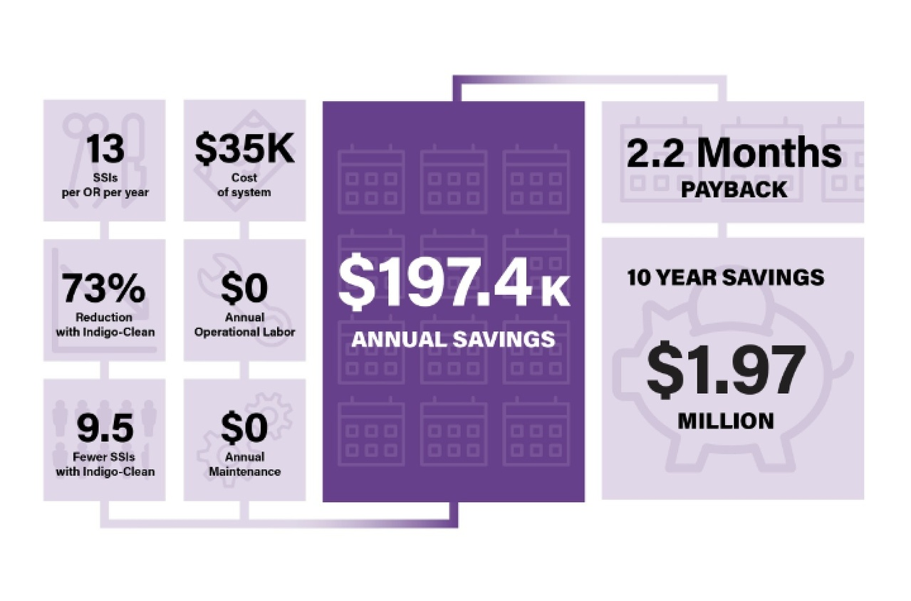 Indigo Clean cost and savings analysis chart
