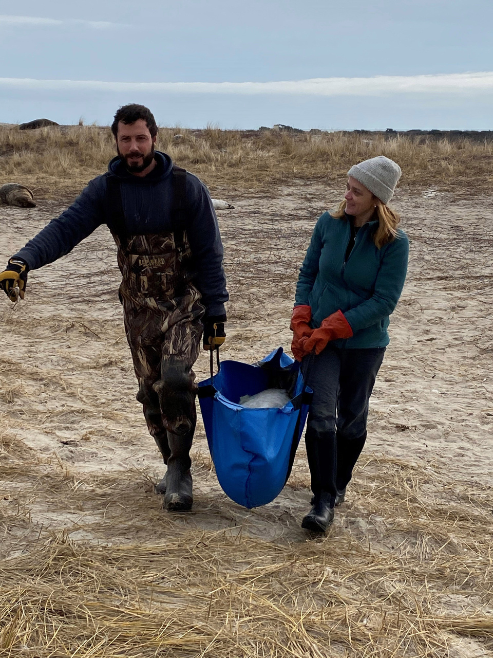 Man and woman carrying seal to sampling station