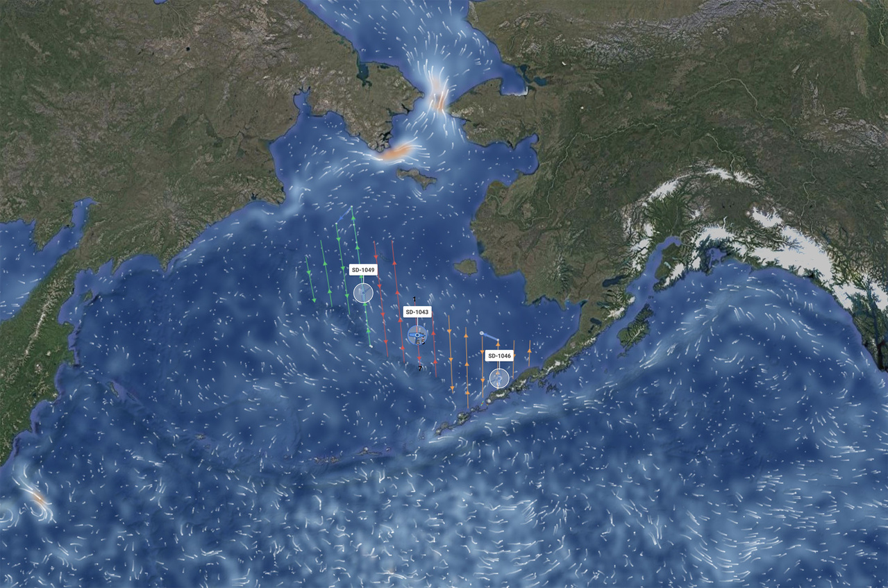 Map of the Bering Sea survey area with lines indicating the planned survey transects.