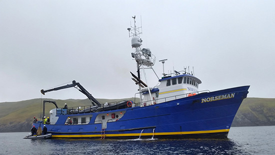 Loading the final captured harbor seal aboard the R/V Norseman., Photo by Shawn Dahle