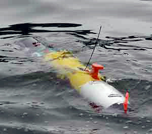 Autonomous Underwater Vehicles (AUV).jpg