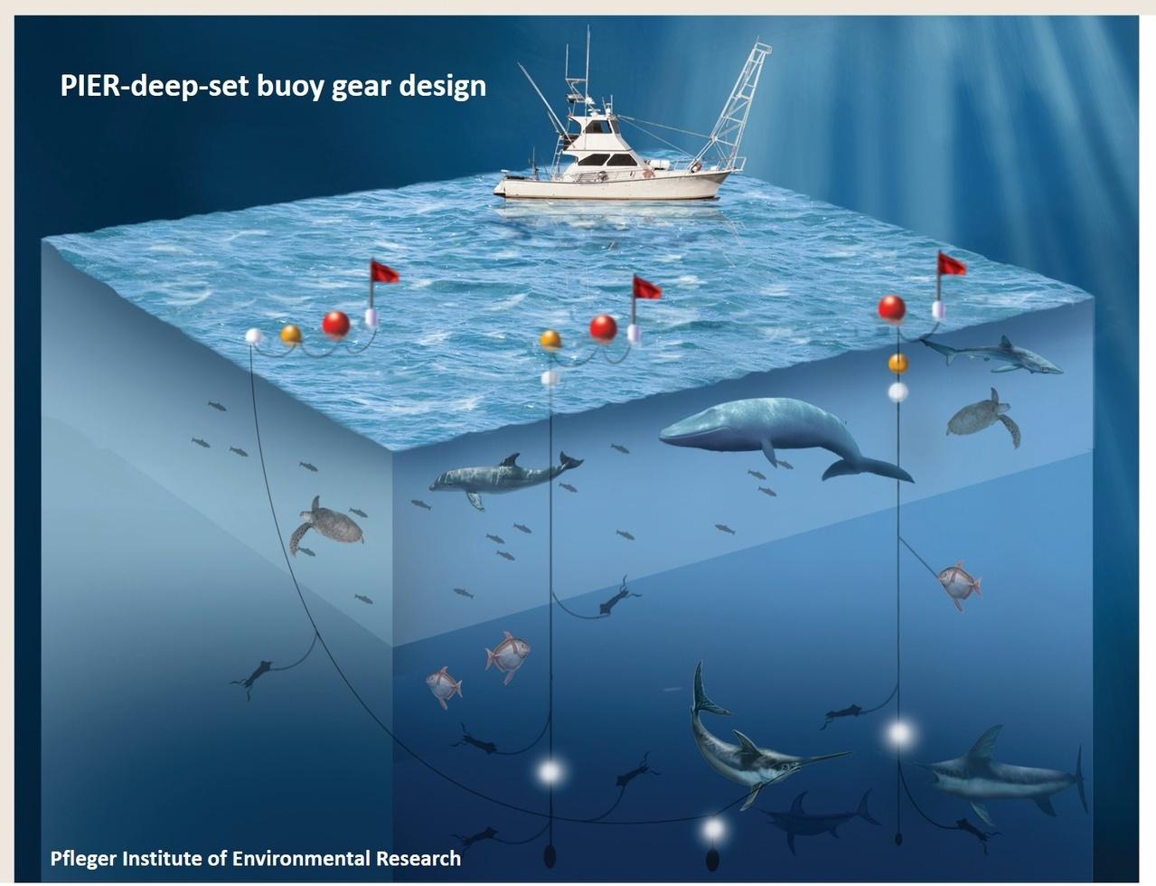 Infographic of PIER design