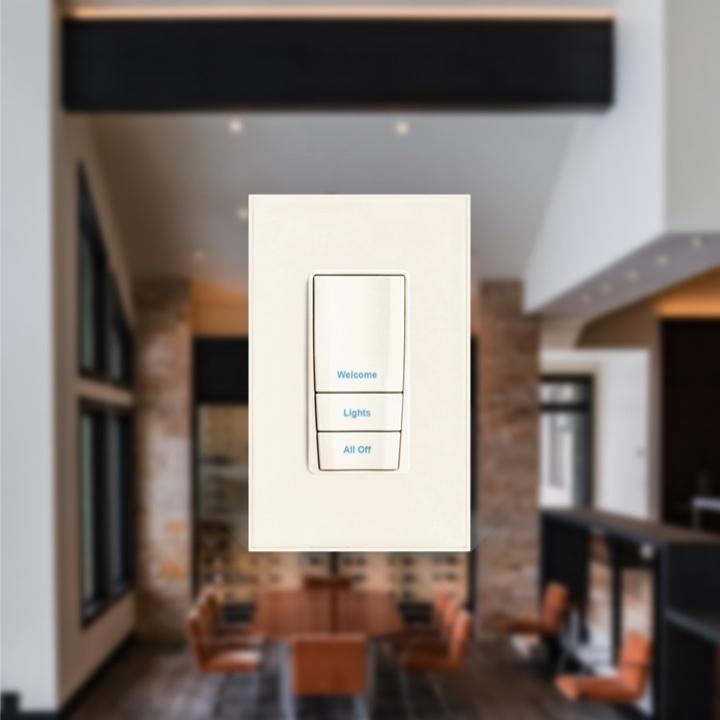 Wall switch in dining room