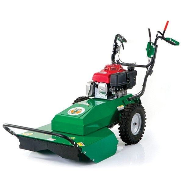 Walk Behind Brush Cutter Rental.jpeg