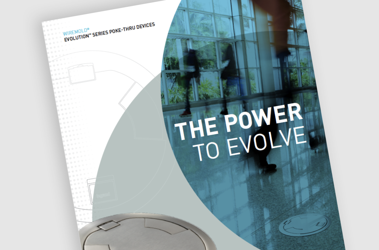 Image of a flyer with the title The Power to Evolve