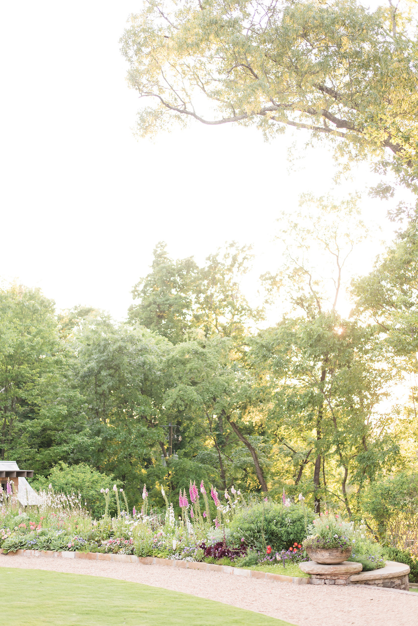 The sunset filters through the trees for a dreamy afternoon in this gorgeous garden.