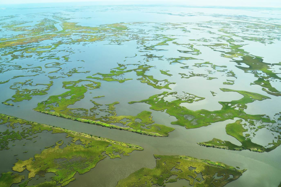 Aerial view of Barataria Basin marsh, part of the Gulf Spill restoration.