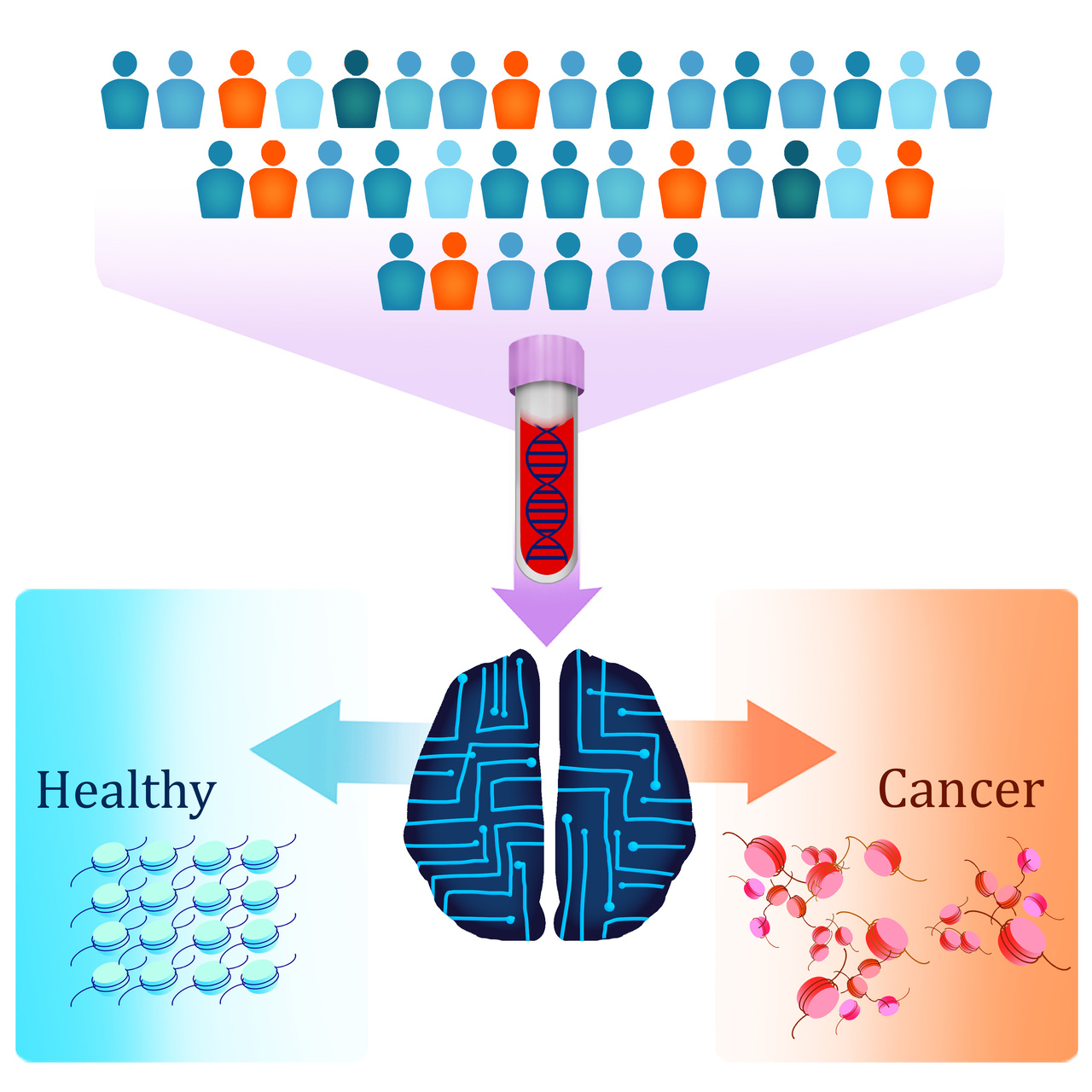 5-29-19  Johns Hopkins Researchers Design New Blood Test That Uses DNA 'Packaging' Patterns to Detect Multiple Cancer Types.jpg