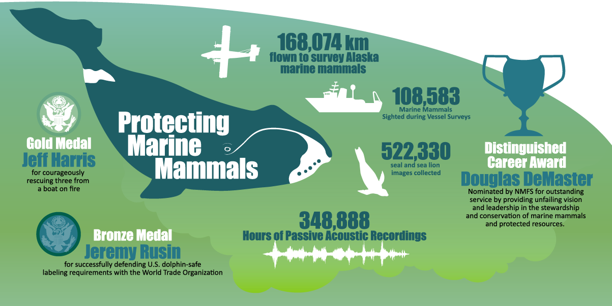 """Alaska Fisheries Science Center 2019 Year in Review infographic """"Protecting Marine Mammals"""""""