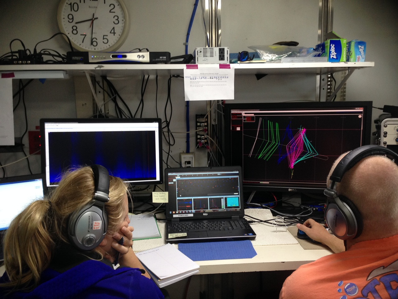 The acoustics team monitors the towed hydrophone array and detects cetaceans in real-time.