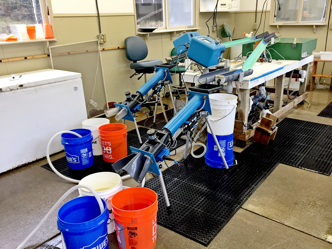 2)	Our tagging setup. Fish are clipped in the green tank and sent down the water slides to the blue, cube-shaped machines, which cut individual tags and insert them into the fish. The fish are then passed through the blue, cylindrical detectors to verify that they have a tag.