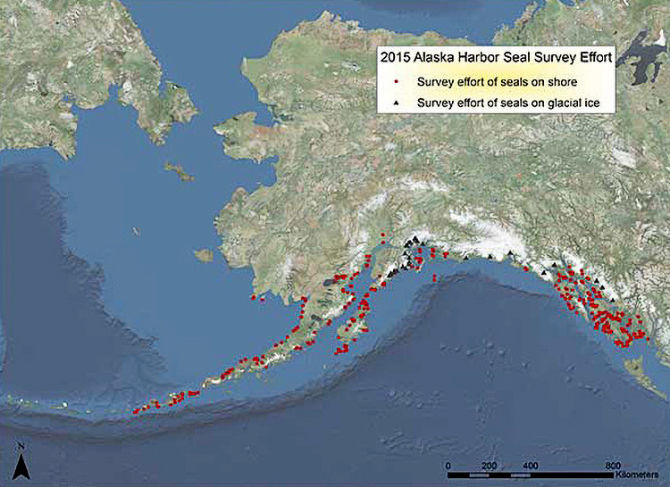 Alaska harbor seal survey effort in 2015.