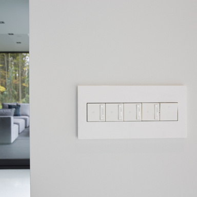 White switches on white wall to living room