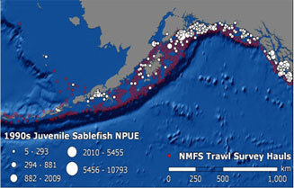 Distribution of juvenile sablefish in the 1990s as sampled by the trawl survey.