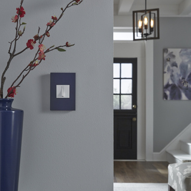 blue wall plate and white switch with pale blue wall and plant