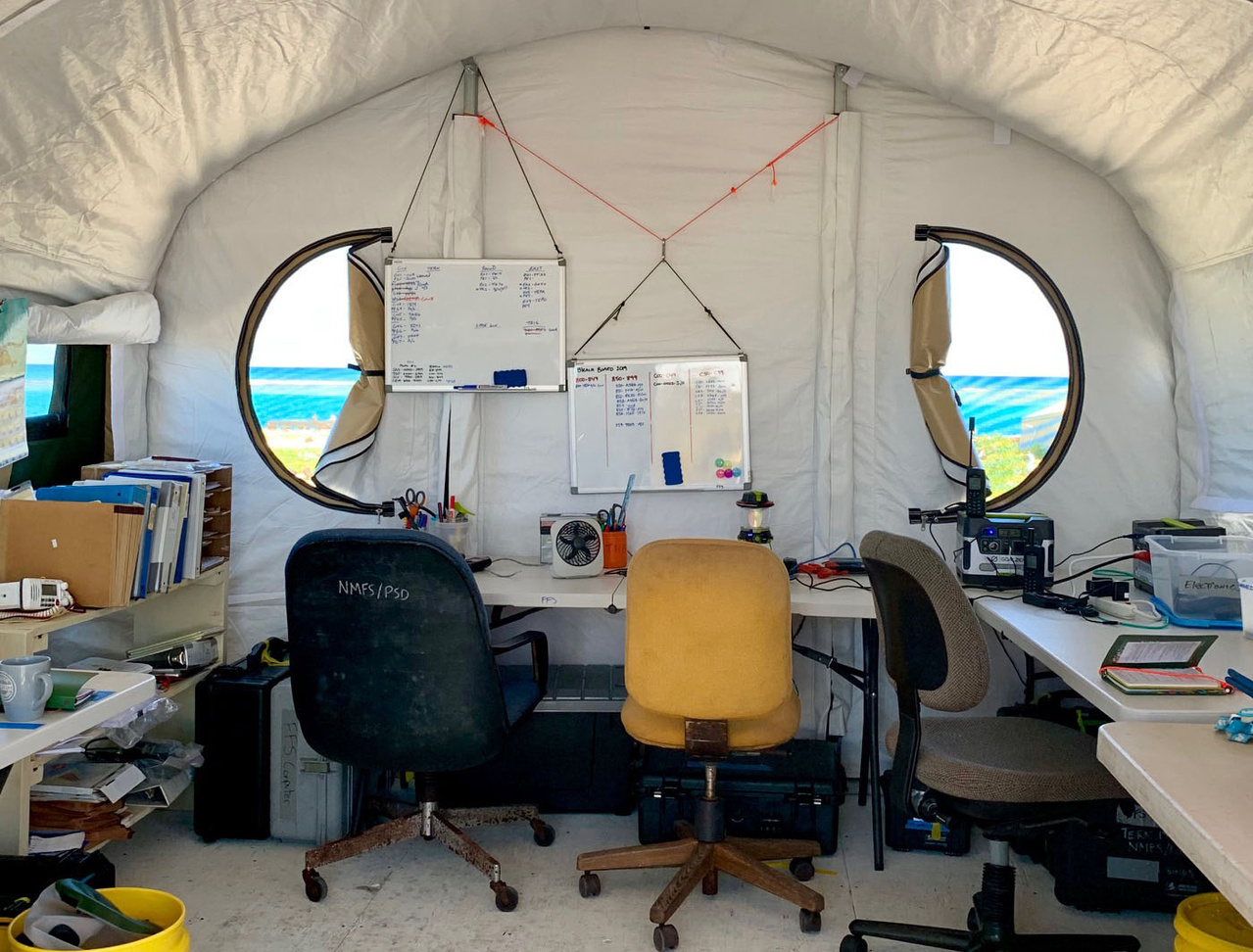 The view from inside a tent at French Frigate Shoals during the 2019 field season.