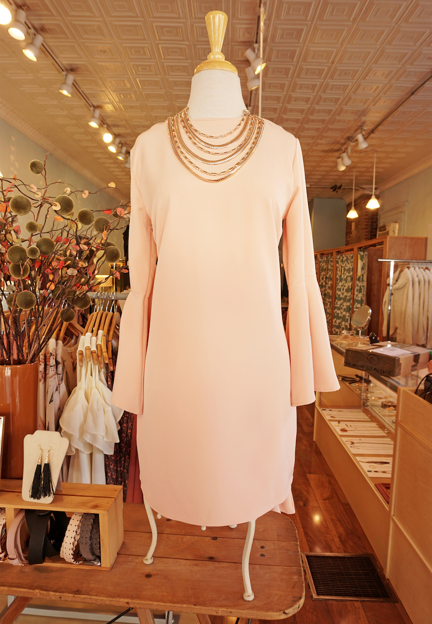 "From <a href=""https://styleblueprint.com/louisville/guide/general-eccentric/"" target=""_blank"">General Eccentric</a>: Blush dress with bell sleeves, $36; Gold statement necklace, $16"