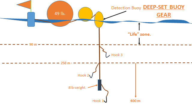 Diagram of Deep Set Buoy Gear