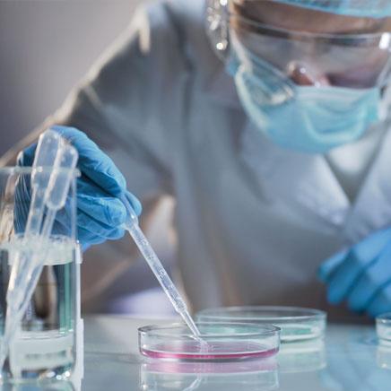 scientist placing liquid in petri dish