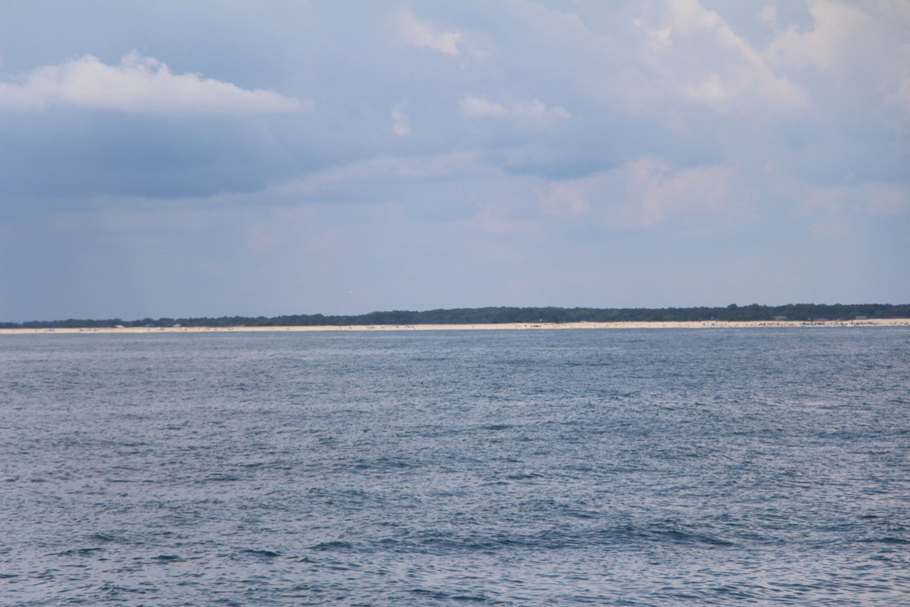 GU1902-assateague-island-hjw.jpg