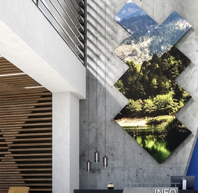Forest mural in a office building with cement walls